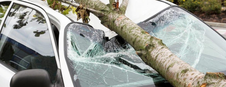 Sturmschaden am Auto