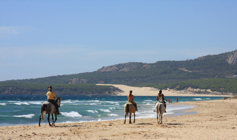 Reiten am Strand von Malaga