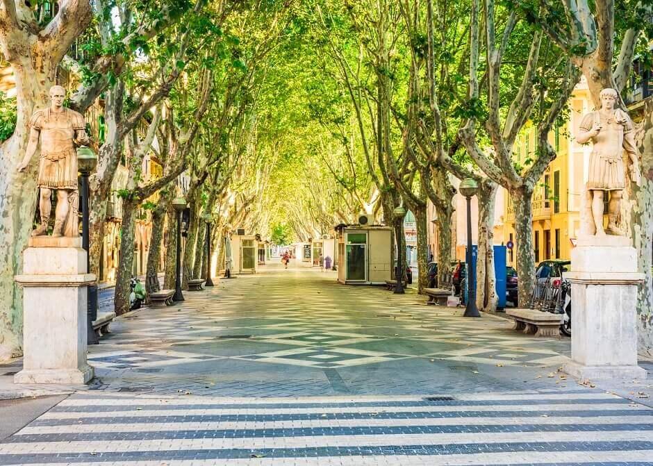 Mallorcas Passeig del Born