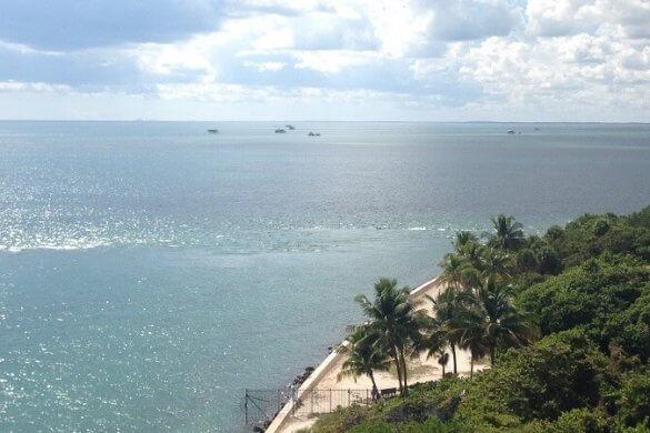 Strand und Palmen in Florida