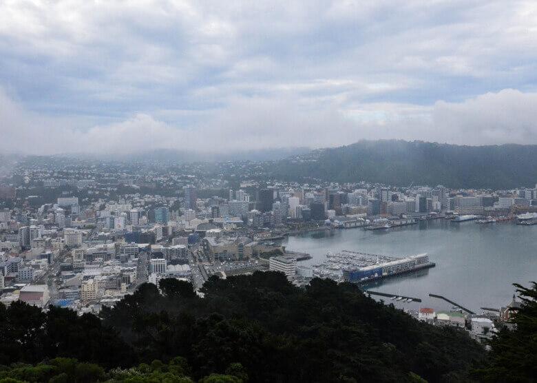 Aussicht über Wellington