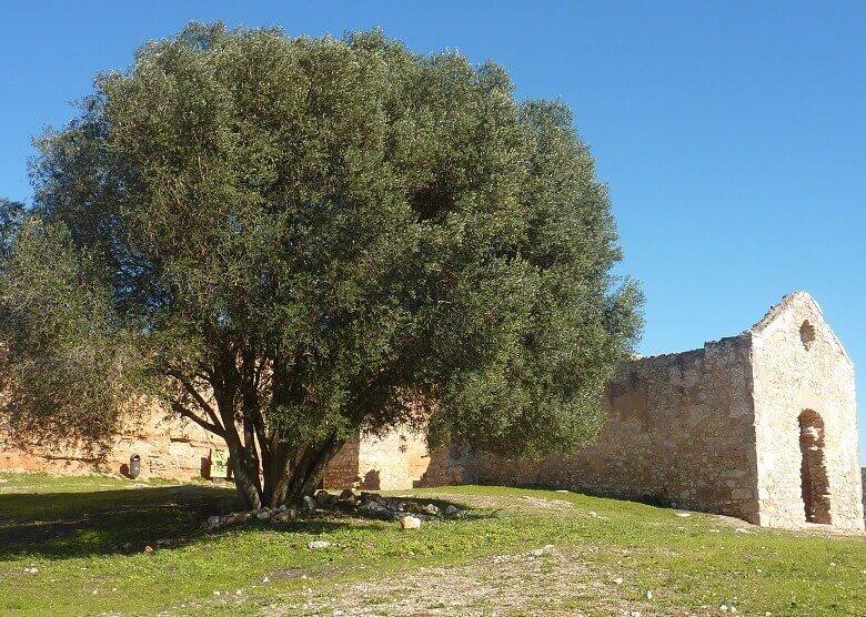 Schloss von Paderne