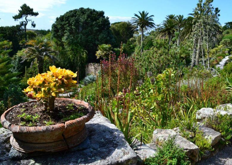 Tresco Abbey and Gardens