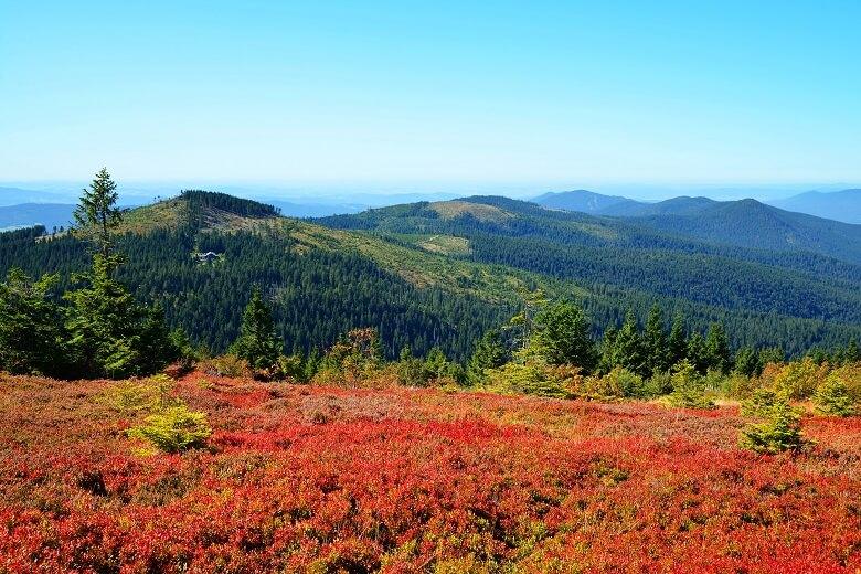 Nationalpark Bayerischer Wald im Herbst