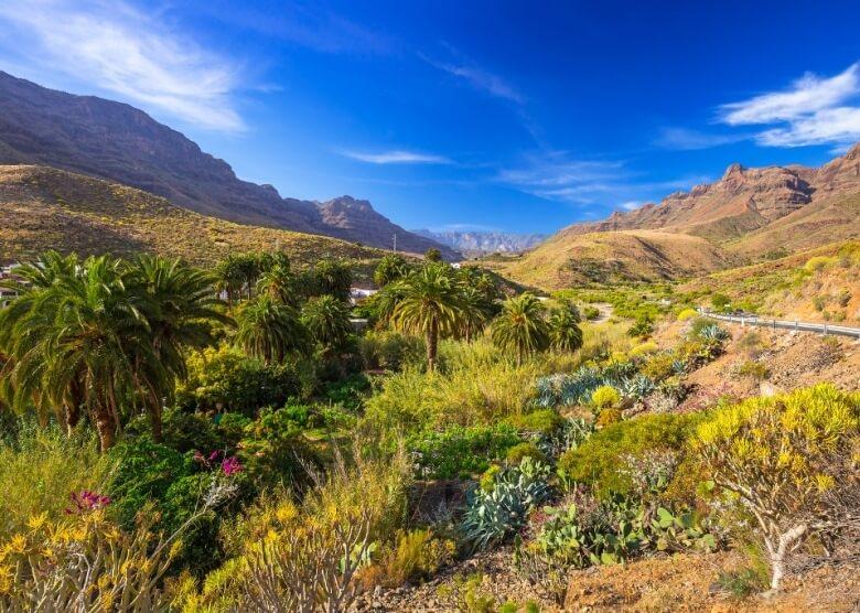 Wunderschön: Die Natur von Gran Canaria