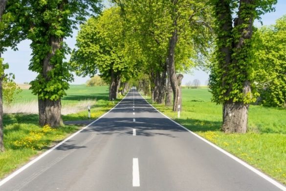 Die besten Roadtrips im April