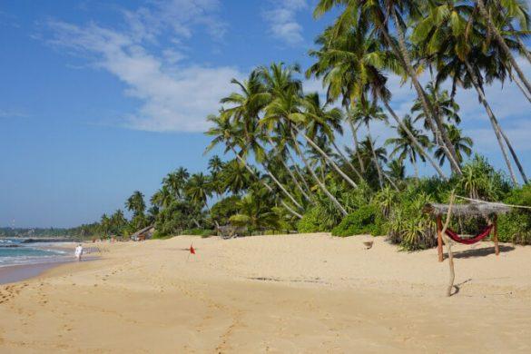 Sandstrand auf der Insel Sri Lanka