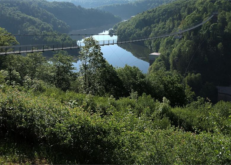Seitenansicht der Hängeseilbrücke Titan-RT an der Rappbodetalsperre