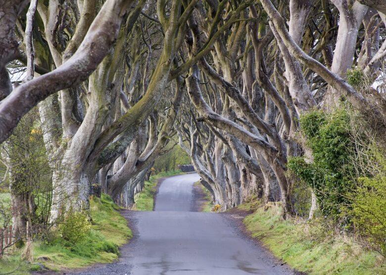 Nordirland, Drehort für viele Szenen aus Game of Thrones