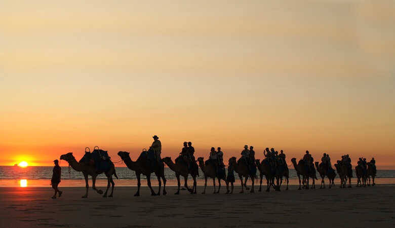 Kameltour am Cable Beach in Westaustralien