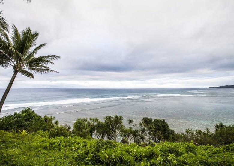 Blick auf Kenomene Beach mit Palmen auf Hawaii