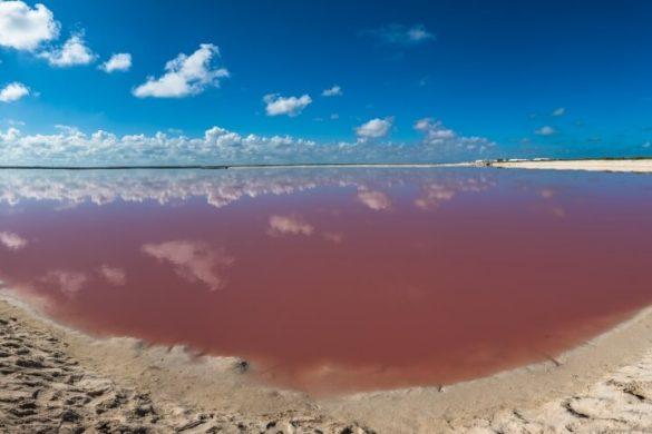 Pinkfarbenes Wasser bei Las Colaradas in Yucatan Mexico