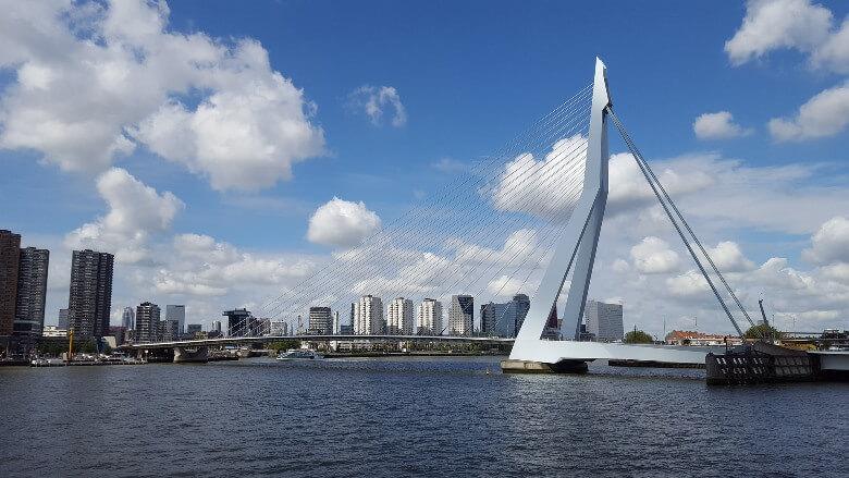 Blick auf den Schwan in Rotterdam
