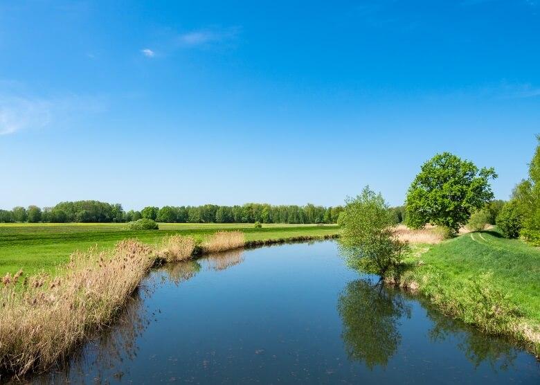 Der Gurkenradeg führt durch die schönen Landschaften des Spreewalds