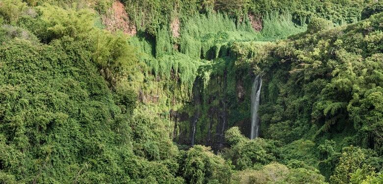 Wasserfall im Black River Nationalpark auf Mauritius