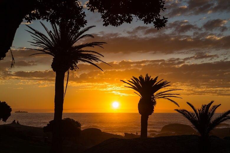 Sonnenuntergang hinter Palmen am Strand Camps Bay von Kapstadt