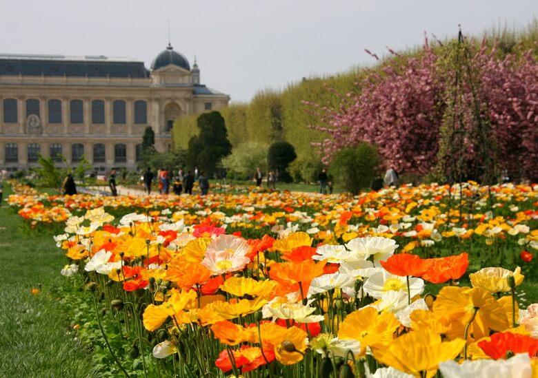 Botanischer Garten Jardin des Plantes in Paris