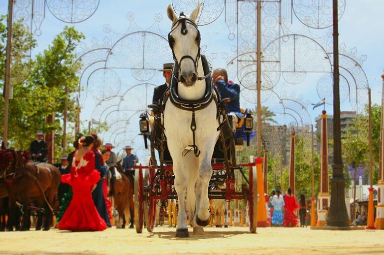 Umzug mit Pferden in Jerez de la Frontera in Südspanien