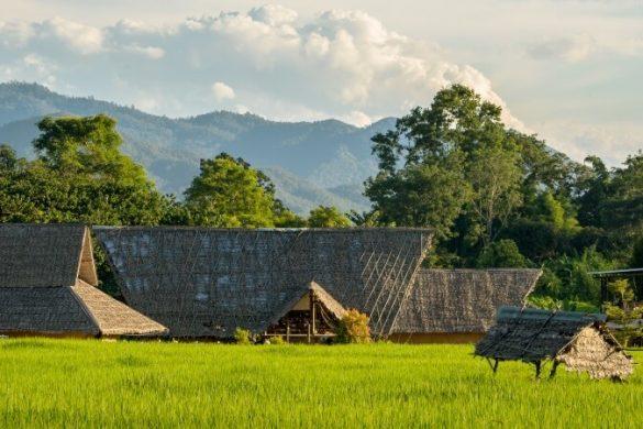 Felder und traditionelle Häuser in der Provinz Pai in Thailand
