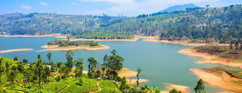 Blick über Teeplantagen, Berge und Wasser in Sri Lanka