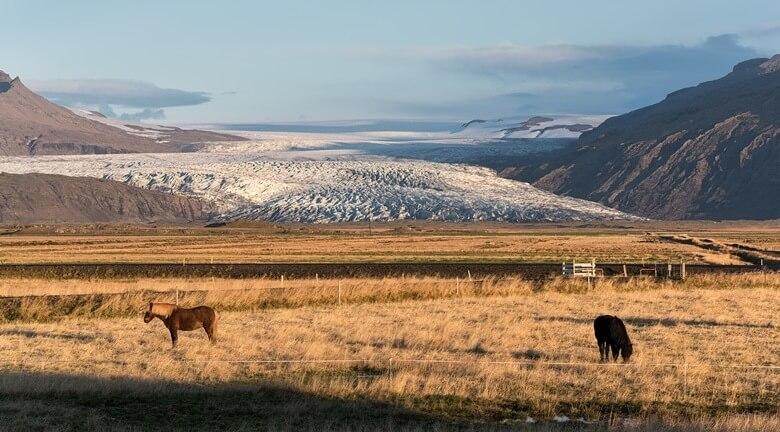 Vulkan Vatnajoekull in Island mit Gletscher und Pferden im Vordergrund