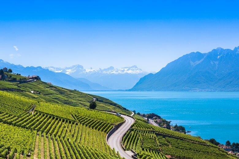 Seestraße durch die Lavaux-Terrassen am Genfer See in der Schweiz