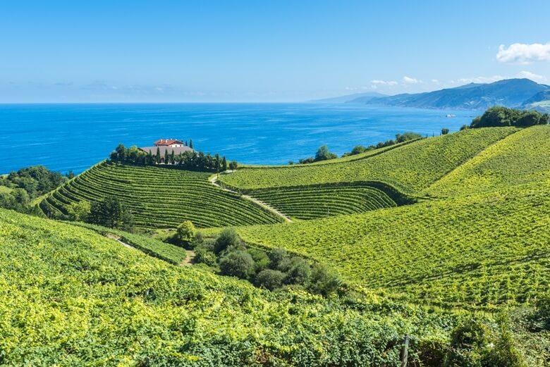 Üppige Felder in Spaniens Baskenland mit Blick auf das Meer
