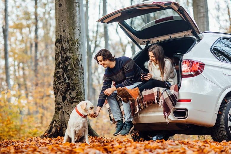 Pärchen im Auto mit Hund