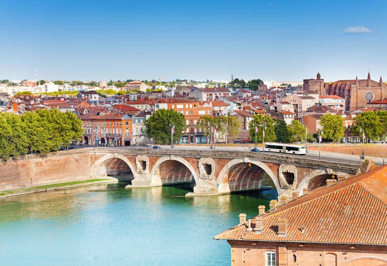 Toulouse und Pont Neuf an der Garonne
